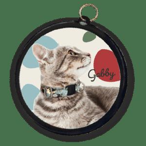 placa de identificación para gato